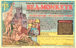 Who remembers sea monkeys?